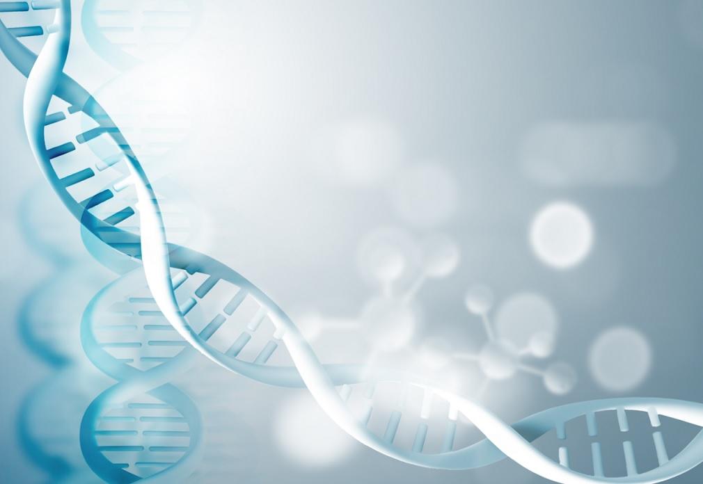 微生物基因组组装和后续应用-培训中心-www.bncc.org.cn北纳生物