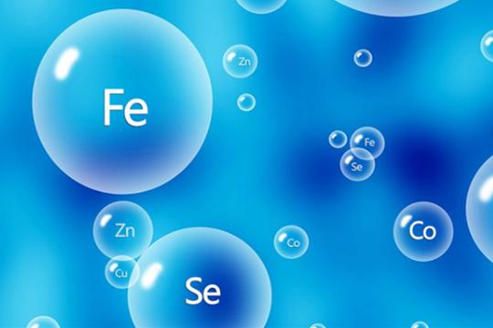 测定9 种微量金属杂质的影响(一)