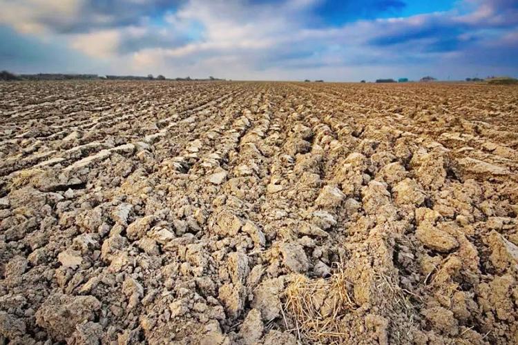 三氧化二铁强化热解修复重质石油污染土壤-www.bnbio.com北纳生物