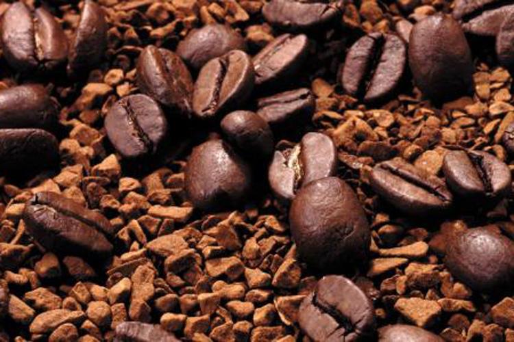 研究发现新型内酰胺咖啡二萜-www.ravenmoonsmedia.com北纳生物