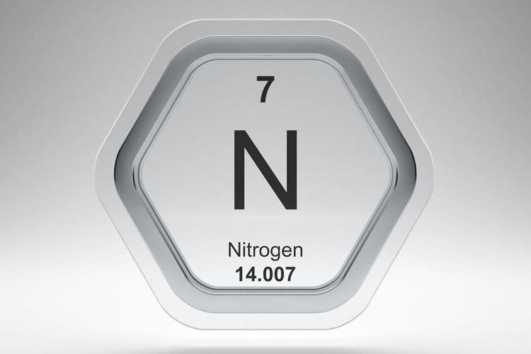 大气氮沉降提高我国毛竹林生态系统固碳能力-www.ravenmoonsmedia.com北纳生物