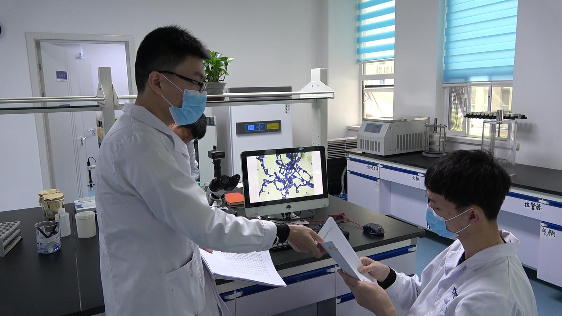 【微剧场】北纳带您了解菌种测序-www.biaowu.com