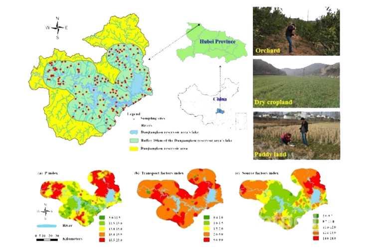 农田土壤磷素空间分布和污染风险评价研究获进展-www.biaowu.com北纳生物