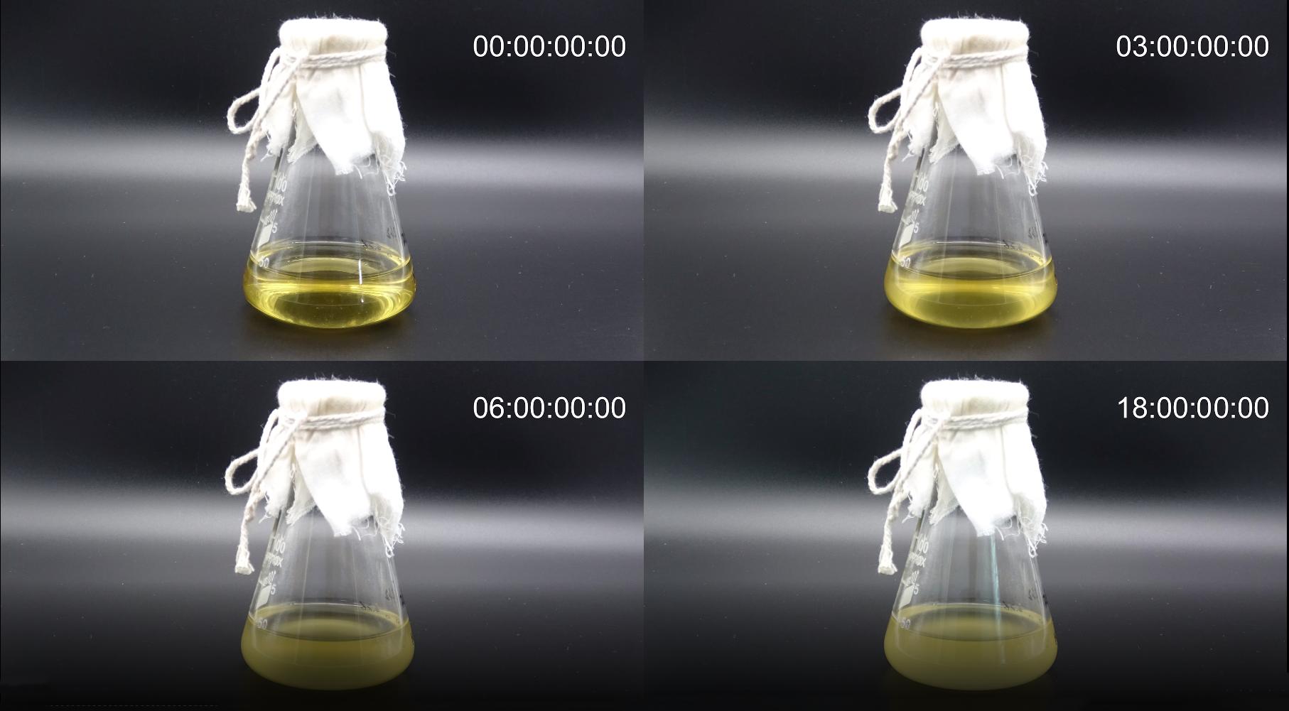 【延时摄影】为您揭秘细菌生长过程-www.biaowu.com北纳生物