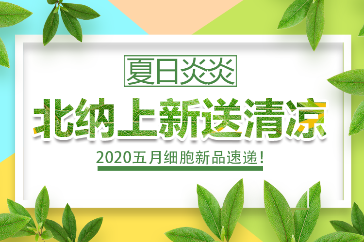 【细胞新品】夏日炎炎,北纳上新送清凉-www.bncc.org.cn北纳生物