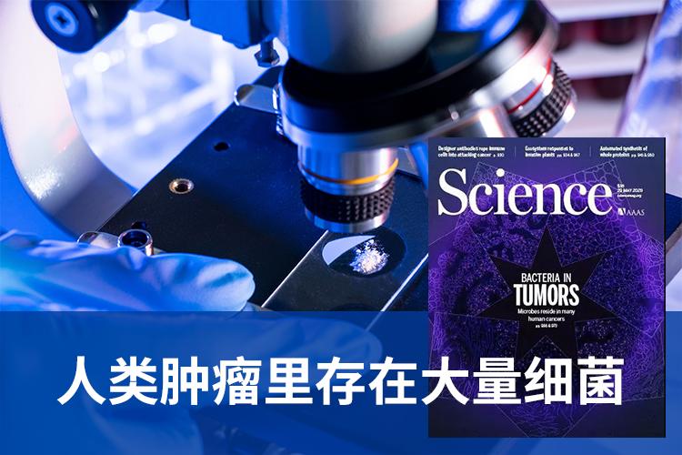 Science封面论文重磅发现:人类肿瘤里存在大量细菌!-www.trendslot.com北纳生物