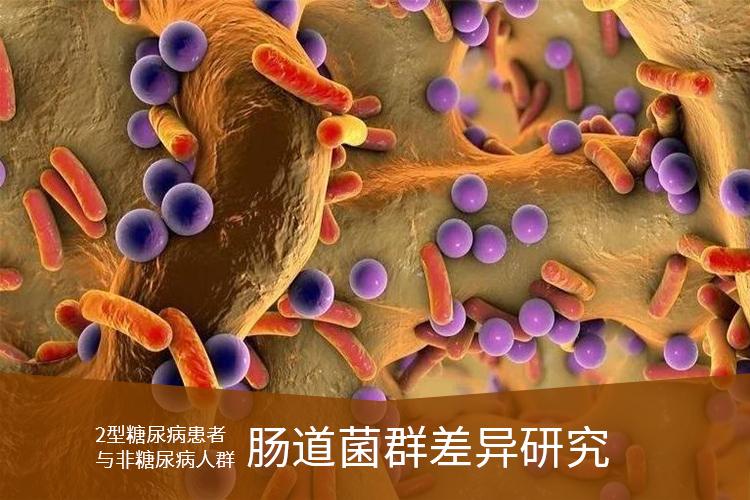 2型糖尿病患者与非糖尿病人群肠道菌群差异研究-www.bncc.org.cn北纳生物