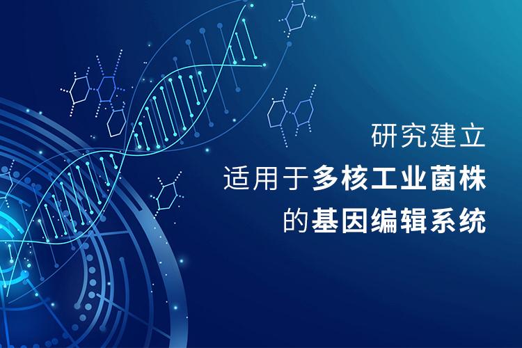 研究建立适用于多核工业菌株的基因编辑系统-www.bnbio.com北纳生物