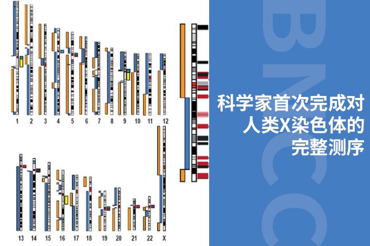 科学家首次完成对人类X染色体的完整测序-www.bncc.org.cn北纳生物