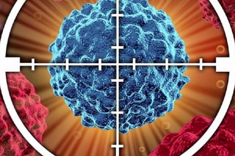 肿瘤患者五年生存率上升10%-www.bnbio.com北纳生物
