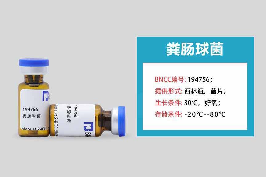 开学季丨北纳新菌大放送-www.bncc.org.cn北纳生物