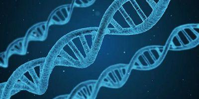 计算机技术帮助优化细胞培养条件-www.trendslot.com北纳生物