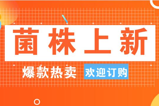 炎夏送清凉 六月任性购   BNCC菌株产品大量上新,欢迎选购哦!-www.bncc.org.cn