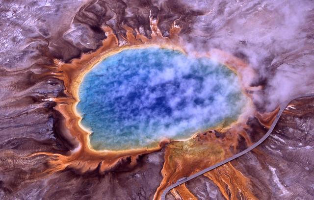 丝状真菌纤维素降解调控机制研究中取得进展-www.bncc.org.cn北纳生物