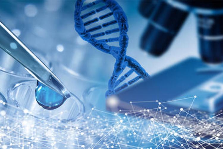 单细胞测序揭示溃疡性结肠炎免疫细胞特征-www.ravenmoonsmedia.com北纳生物