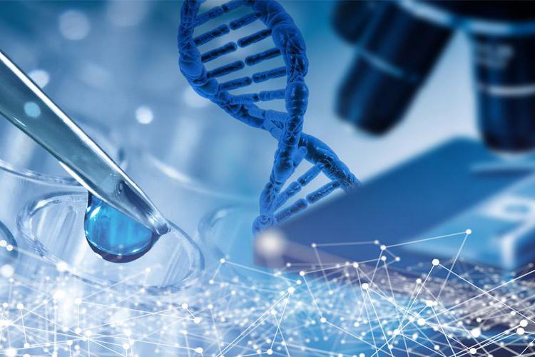 单细胞测序便于分析癌细胞的异质性-www.bnbio.com北纳生物