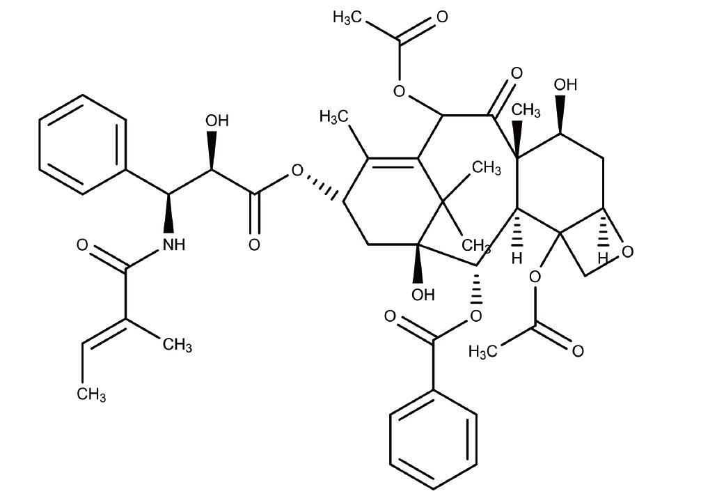 首次发现哺乳动物大脑中存在内源性抗生素-www.bncc.org.cn北纳生物