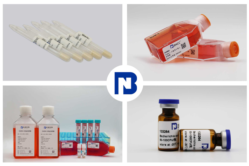 中国国际生物医药与生物技术展览会圆满落幕-www.bncc.org.cn北纳生物