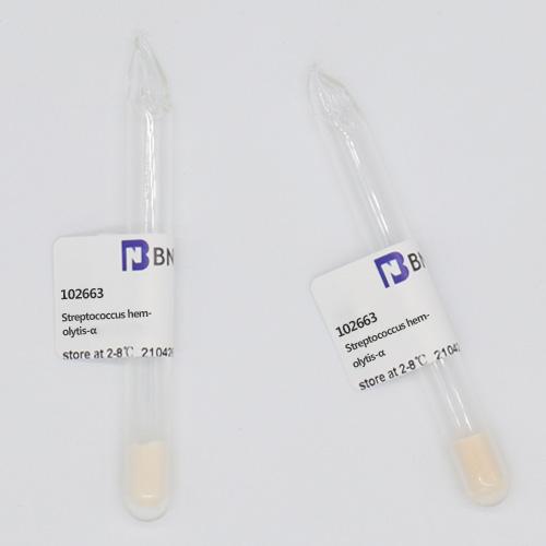 甲型溶血性链球菌-北纳生物