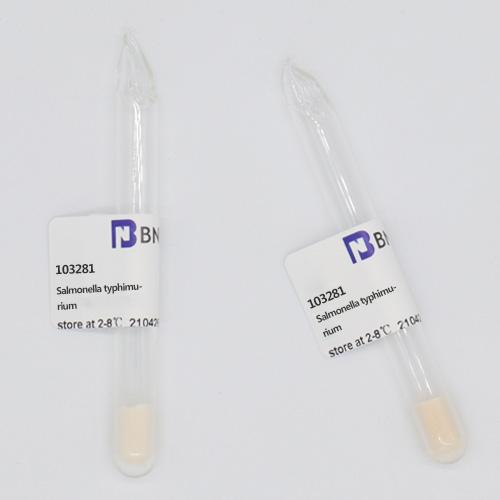 鼠伤寒沙门氏菌-北纳生物