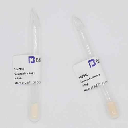 肠炎沙门氏菌肠炎亚种鼠伤寒血清型-北纳生物