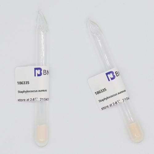 金黄色葡萄球菌-北纳生物