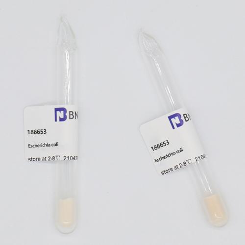 大肠埃希氏菌-北纳生物