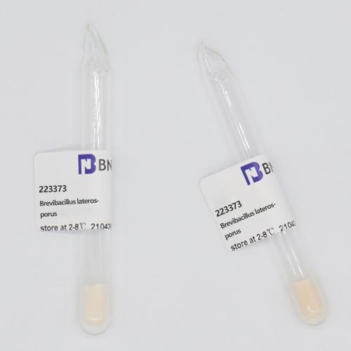 侧孢短芽胞杆菌-北纳生物