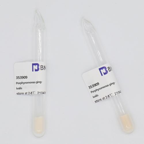 牙龈卟啉单胞菌-北纳生物