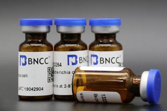 BNCC部分菌种调整通知-www.bncc.org.cn北纳生物