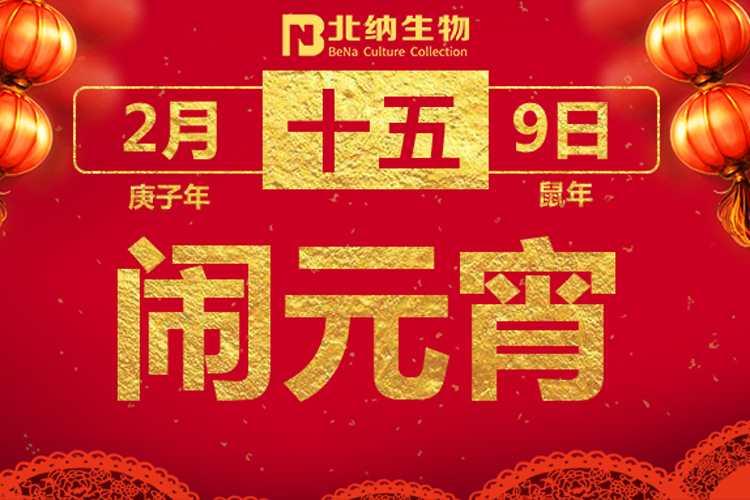 """北纳陪您""""宅""""家过元宵!-www.bncc.org.cn"""